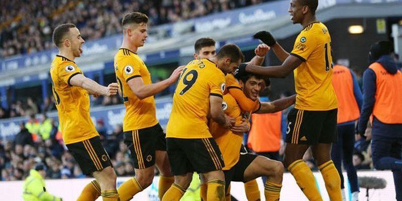 Вулверхэмптон – Ньюкасл Юнайтед. Прогноз на матч 11.02.2019